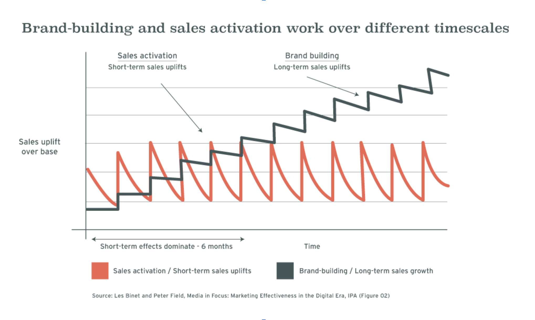 binet diagram - brand building and sales activation work over different timescales - Renoun Creative